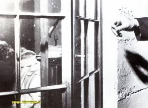 Marilyn Monroe   (13)