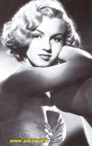 Marilyn Monroe   (20)